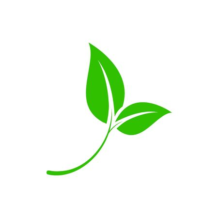 Ecology concept. Green leaf. Pollution problem. Environmental protection. Save the world.