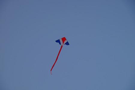 palmy: colorful kite on blue sky