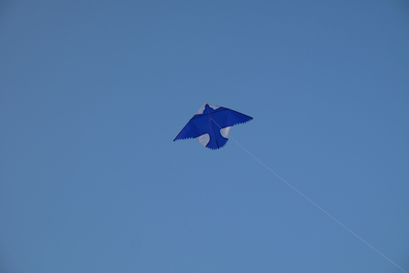 inebriated: colorful kite on blue sky