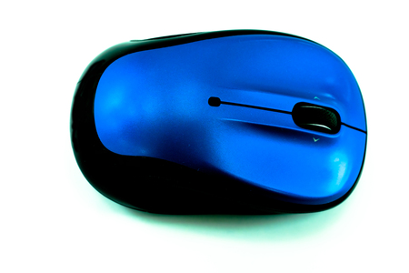 input device: wireless computer mouse