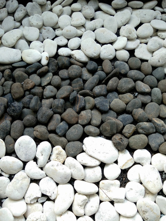 beachcomb: Black and white stone color on the ground