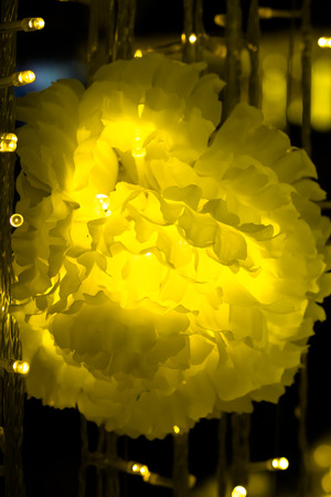 hristmas LED lights in the form of flowers