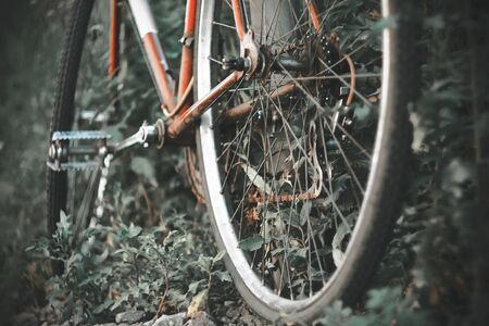 A black-and-white image of a red old rusty Bicycle overgrown with unruly thick grass.