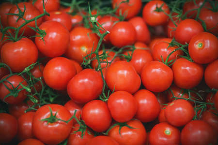 In the grocery store, there are many ripe red tomatoes on thin green twigs. Rich harvest. Reklamní fotografie