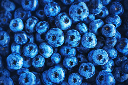 Background with a lot of blue ripe large berries of forest blueberries. Rich harvest. Stock fotó