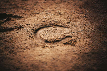 A horseshoe, worn on the hoof of a horse that ran through this area, was imprinted on the sand in the light. Outdoor riding arena.