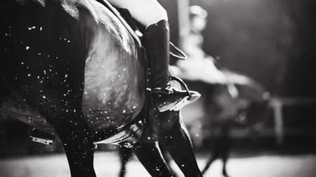 Black and white image of a fast horse with a rider in the saddle, which runs at a gallop and raises the hooves of the air dust and sand from the outdoor arena. Equestrian sport. Horseback riding.