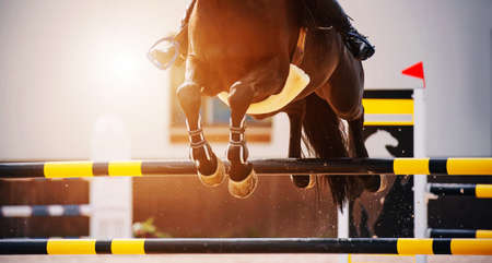 The hooves of a fast bay horse with a rider in the saddle, which jumps over a high black-and-yellow barrier, illuminated by sunlight. Equestrian sports. Show jumping competitions. Horse riding.