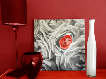 lampe: Red painted wall with rose