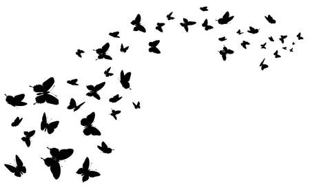 Flying butterfly. Black silhouette butterflies group. Cute wedding love, summer and spring symbol, tattoo graphic design isolated vector concept. Wildlife elements decoration, moths flight Ilustração Vetorial
