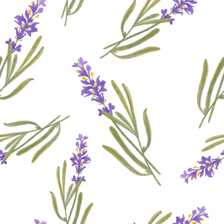 pencil sketch illustration of lavender of Provence