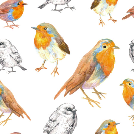 robin bird: pencil sketch seamless pattern with bird robin and sparrow