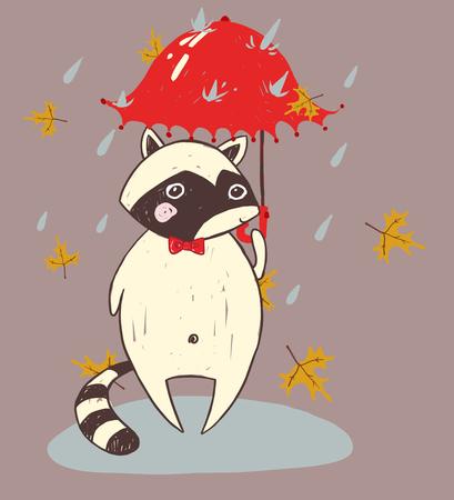 raccoon: cute animal raccoon autumn