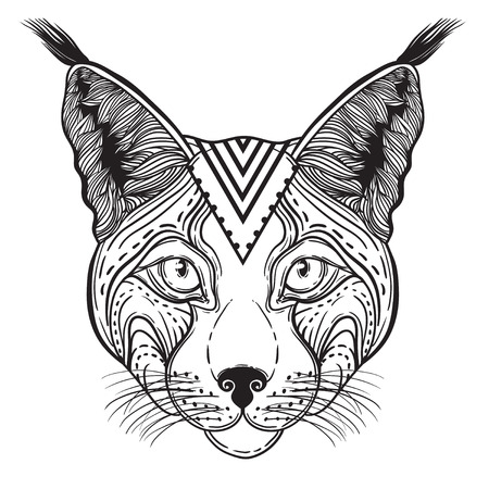 Vector Illustration of an Ornamental Ethnic Lynx Head. head Siberian lynx. suitable for logo print T-shirt Illustration