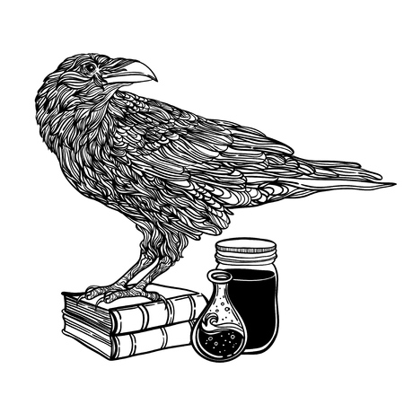 mystical crows zentangle style. magic items, poison, book. Good for T-shirt, bag, coloring book or whatever print. vector illustration. label can be removed