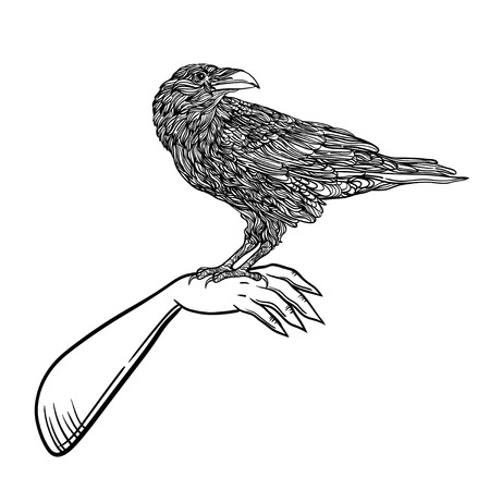 bird raven zentangle style. Good for T-shirt, bag, coloring book or whatever print. vector illustration. label can be removed Illustration