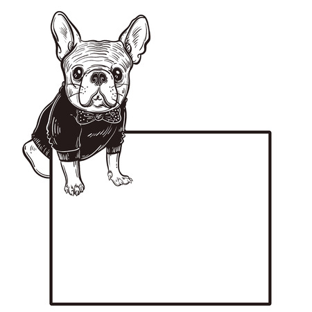 Cute vector illustration with French bulldog. A domestic dog in clothes and a butterfly. Fashionable bulldog.