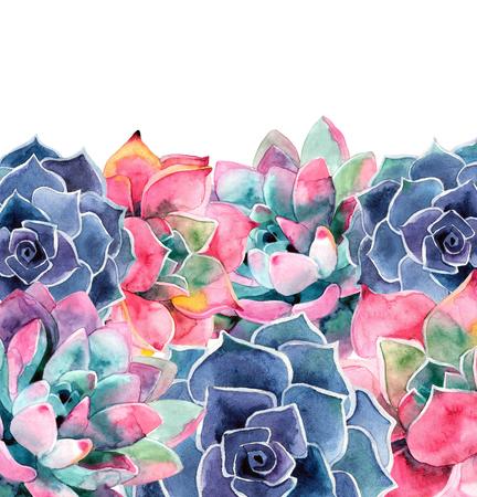 Watercolor succulent. A beautiful summer plant. Watercolor cactus. Greeting card Reklamní fotografie