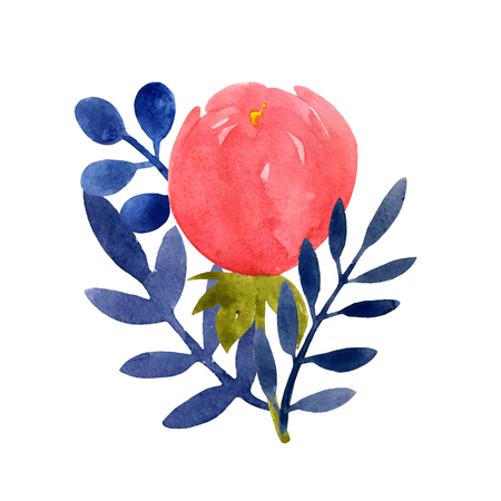 Watercolor illustration with peony and leaves.. Beautiful flowers on a white background. Botanical illustration. Gentle summer Wedding bouquet. Stock Photo