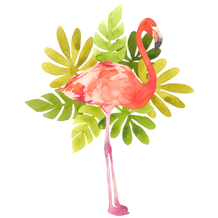 Watercolor illustration with a bird flamingo. Beautiful pink bird and tropical leafs. Tropical flamingo.