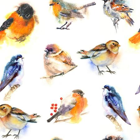 nahtloses Aquarellmuster mit Vögeln. Robin, Schwalbe, Spatz, Gimpel. Standard-Bild