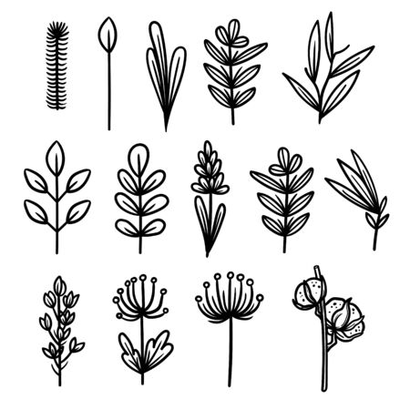 vintage vector icons with floral elements. summer flower and leaf elements.