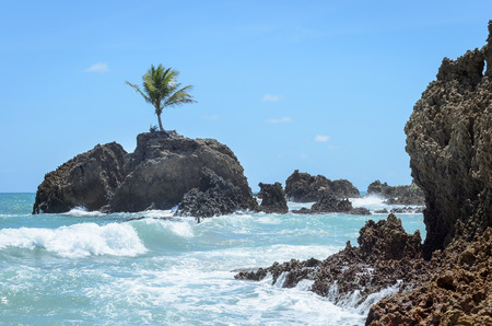 Mini island with a single coconut tree surrounded by sea water and some rock formations in a paradisiacal scenery, very beautiful day. Sea water hitting the rocks and a blue sky background. Coqueirinho beach on Joao Pessoa PB, Brazil.