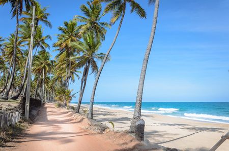Sandy road surrounded by coconut trees next to a beautiful beach with the waves on a beautiful sunny day with blue sky. Praia do Seixas beach on Joao Pessoa PB, Brazil. Stock Photo