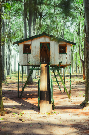 Wooden kids house surrounded by eucalyptus trees. Farms playground for kids, nobody on photo. House with a slide for kids have fun.