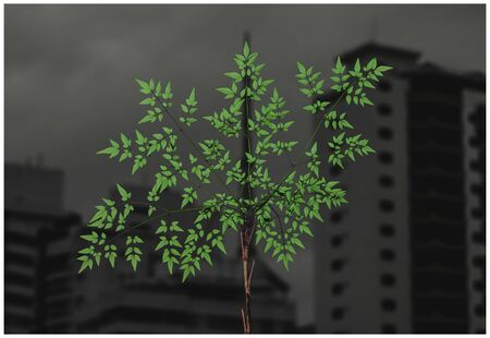 Green plant on foreground (centralized) and tall buildings on the background on a cloudy day. Dark and dramatic appearance. Nature vs urbanization background.
