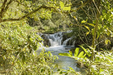 Cascades of a river surrounded by nature of a green forest. Natural beauties of Bonito MS, Brazil. 版權商用圖片