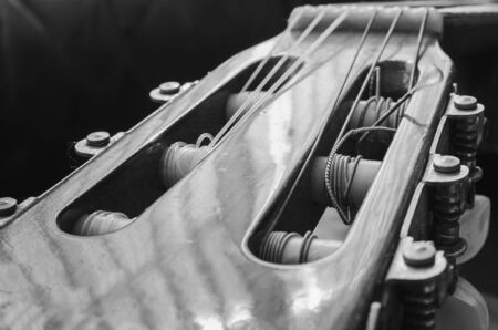 Headstock of an acoustic guitar. Details of the head with the nylon strings coiled on the tuning pegs of an old acoustic guitar, worn out and dusty. Black and white macro photo with depth of field.