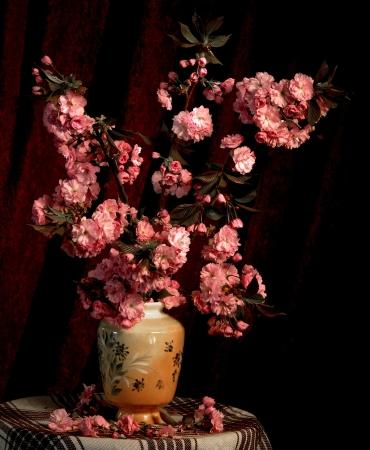 reflection of life: Sakura in a vase on a dark background