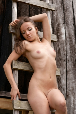 Young nude woman on a wooden ladder