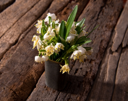 Fading snowdrops in vase  on a wooden background photo