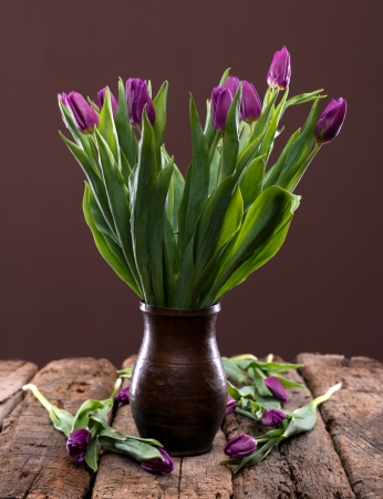 Bunch of purple tulips over brown background photo