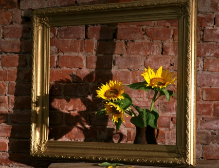 Still life with sunflowers and old frame on a brick wall photo