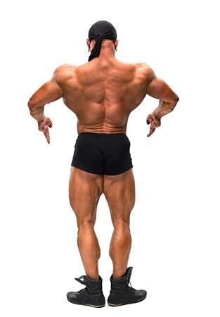 De bodybuilders terug op witte achtergrond.