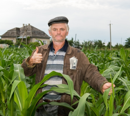 The farmer with money in the pocket in the field