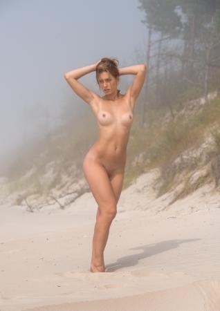 nue plage: Belle jeune nue posant sur un jour de brouillard Banque d'images