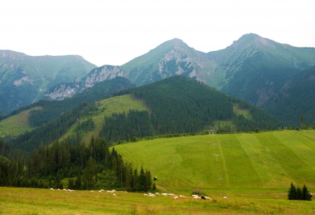 highlands region: Mountains in National Park High Tatra. Slovakia, Europe