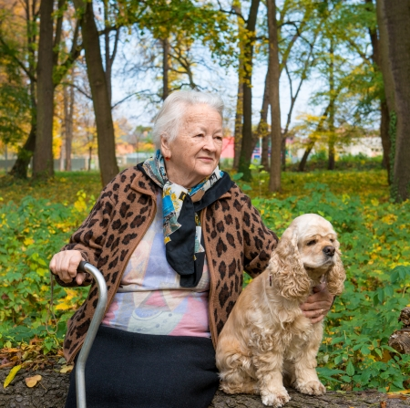 Old woman sitting on a bench with a dog in autumn park
