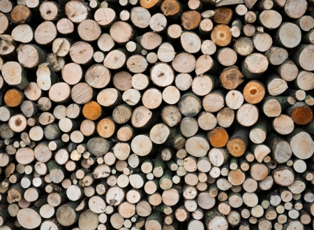 wood log: Pile of wood logs ready for winter Stock Photo