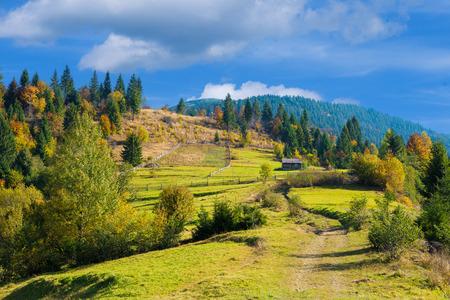 Autumn landscape in Carpathian mountains in Ukraine