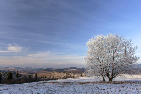 First snow in the Carpathian mountains