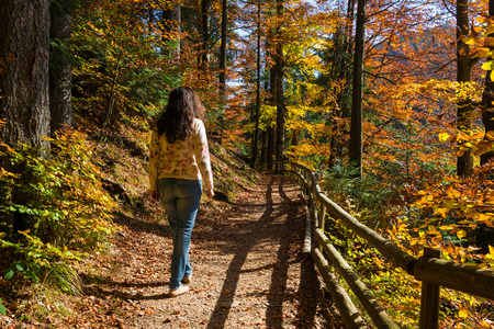Woman walking in the autumn forest Stock Photo