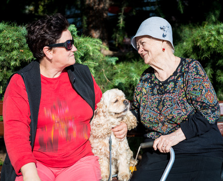 Two women and dog sitting on a park bench Standard-Bild