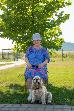 aging american: Old woman sitting on the chair with dog in the park Stock Photo