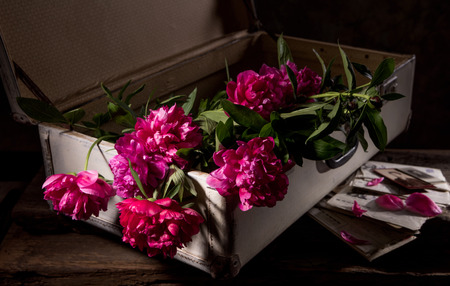 pics: Artistic still life with peonies in old suitcase, old pics and letters