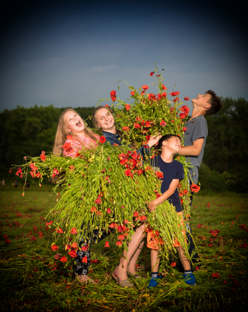 Children holding huge bouquet of poppies at sunset. Summer sunny day photo